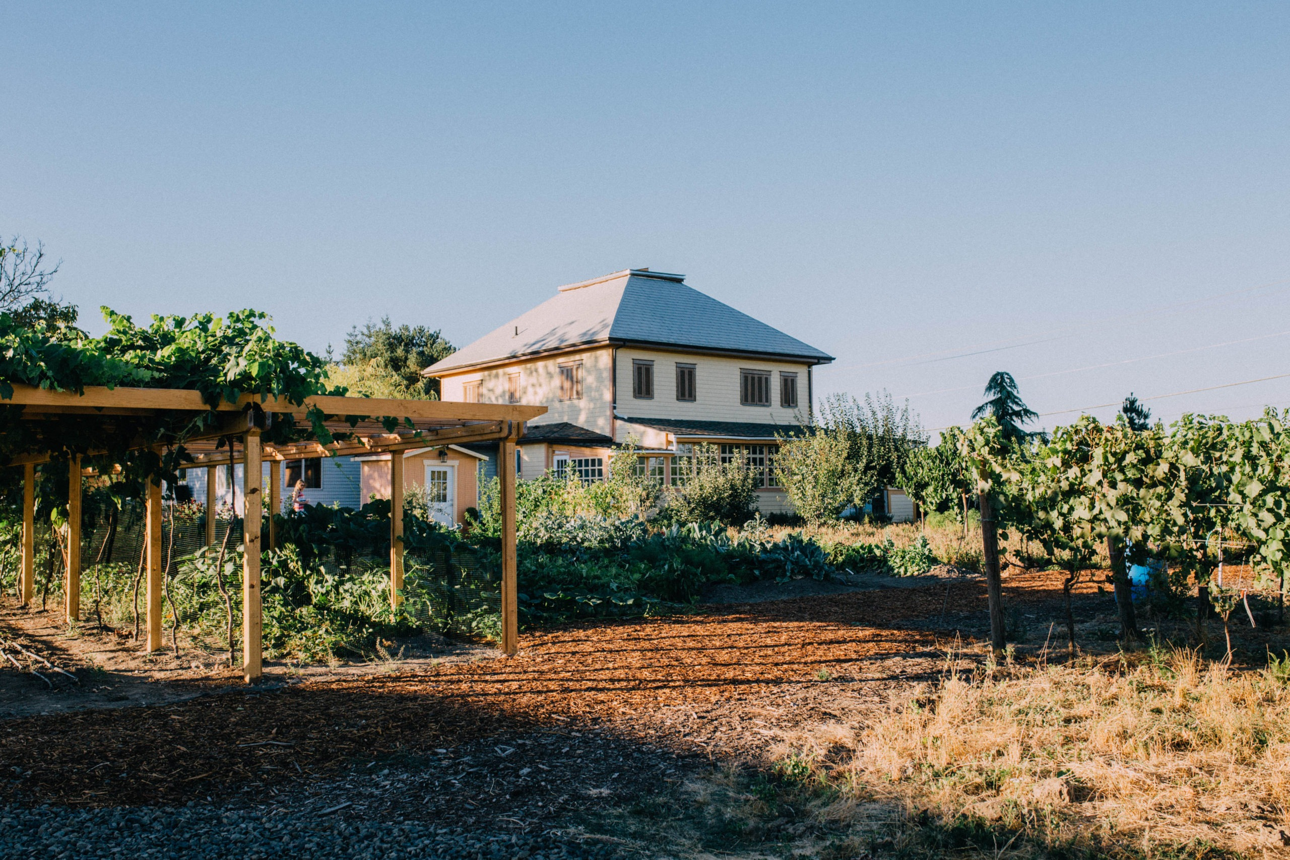 Kookoolan Farms – Vertically Integrated Farming Opportunity